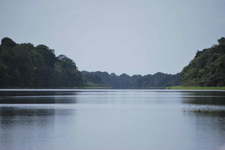 Rio Negro bd